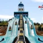 Water slides at Zoomarine