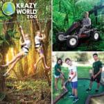 Krazy World Activities
