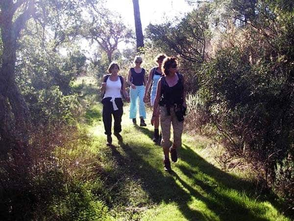 Group of 4 walking in Monchique