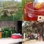 4 imagens, cestos, doces tradicionais, vinhos e sobreiros, Portimão.