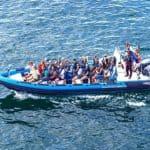 Benagil Caves Rib Boat From Portimao