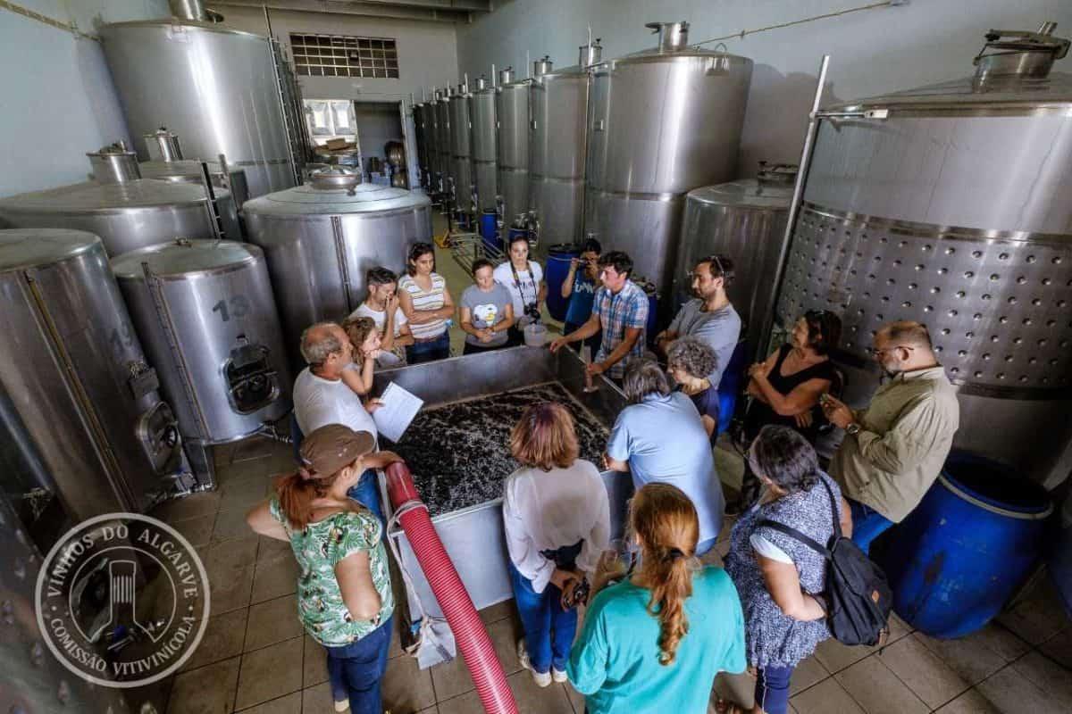 group learning about the wine making