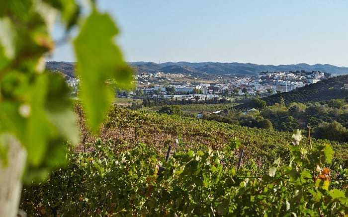 Quinta Mata Mouros con vistas a la ciudad de Silves y el castillo