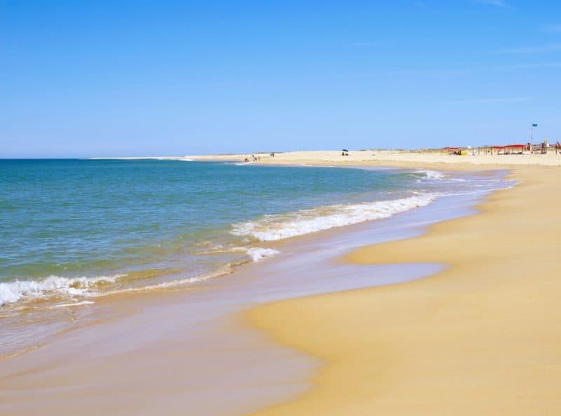 orilla de la playa en un día soleado sin nubes