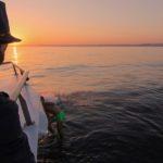 Sunset cruise Vilamoura