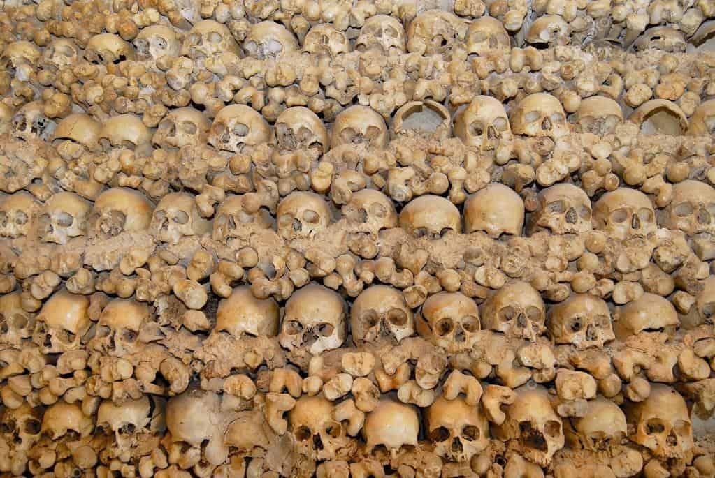 bone chapel alcantarilha