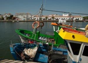 Barcos coloridos em Tavira